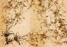 Uitstekende flourishornament op een oude document rug. Royalty-vrije Stock Afbeeldingen