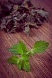 Uitstekende foto, Verse en droge citroenbalsem op houten lijst, herbalism royalty-vrije stock fotografie