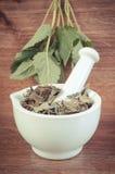 Uitstekende foto, Verse groene en droge citroenbalsem in mortier, herbalism, alternatieve geneeskunde stock foto's