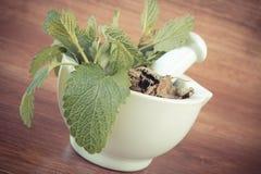 Uitstekende foto, Verse groene en droge citroenbalsem in mortier, herbalism, alternatieve geneeskunde royalty-vrije stock fotografie
