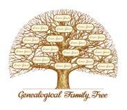 Uitstekende Genealogische Stamboom Hand-drawn schets vectorillustratie Stock Afbeelding