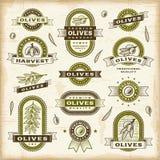 Uitstekende geplaatste olijfetiketten Stock Foto