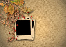 Uitstekende geweven achtergrond met langzaam verdwenen de herfstbladeren en foto-F Stock Afbeeldingen