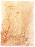 Uitstekende geweven bloemenachtergrond Royalty-vrije Stock Foto's