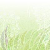 Uitstekende groene abstracte bloemenachtergrond Stock Foto's
