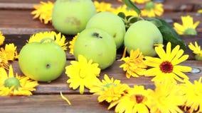 Uitstekende groene appelen en oranje bloemenspijkers op een houten oppervlakte een de zomerdag in openlucht in de tuin stock video