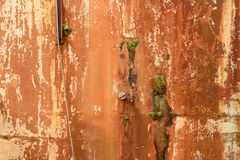 Uitstekende Grunge-Textuur met Gepelde Verf en Groene Vormsinaasappel stock afbeeldingen