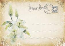 Uitstekende grungeprentbriefkaar met bloemen Illustratie Vector Illustratie