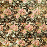 Uitstekende Grungy Verontruste Bloemen nam Behang toe Stock Afbeeldingen