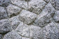 Uitstekende of grungy witte achtergrond van natuurlijk cement 1 Stock Foto's