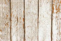 Uitstekende grungy witte achtergrond van natuurlijke houten of houten oude textuur Royalty-vrije Stock Fotografie