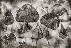 Uitstekende herbariumachtergrond Royalty-vrije Stock Foto