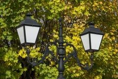 Uitstekende het parklamp van het stijlijzer Close-up royalty-vrije stock foto's