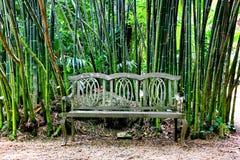 Uitstekende houten bank in tuin met bamboeachtergrond stock fotografie