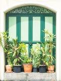 Uitstekende houten deur Stock Afbeelding