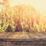 Uitstekende houten raadslijst voor dromerig en abstract landschap met lensgloed Royalty-vrije Stock Afbeelding