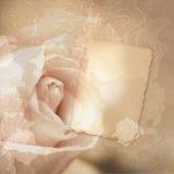 Uitstekende kaart met rozen stock afbeelding