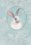 Uitstekende kaart met wit konijntje Stock Foto's