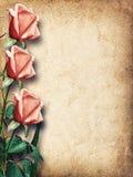 Uitstekende kaart voor gelukwensen met roze rozen Royalty-vrije Stock Afbeeldingen