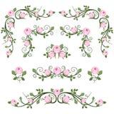 Uitstekende kalligrafische vignetten met roze rozen. stock illustratie