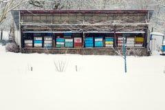 Uitstekende kleurrijke houten bijenkorven op de winter sneeuwdag stock afbeelding