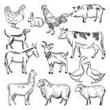 Uitstekende landbouwbedrijfdieren Ter beschikking getrokken van de de landbouwillustratie stijl vector illustratie