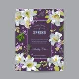 Uitstekende Lily Floral Colorful Frame Royalty-vrije Stock Foto