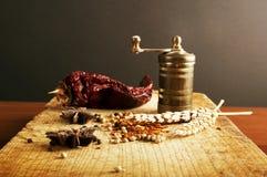 Uitstekende molen met kruiden Royalty-vrije Stock Afbeelding