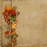 Uitstekende mooie achtergrond met de herfstgrens vector illustratie