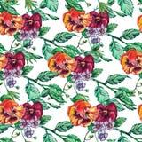 Uitstekende Naadloze het viooltjebloemen van de patroonwaterverf Stock Fotografie
