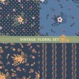 Uitstekende naadloze patroonreeks Bloemen, takken, bessen Stock Afbeeldingen