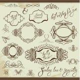 Uitstekende ornamenten en kaders, kalligrafische vignetten, Stock Fotografie