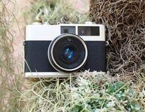 Uitstekende oude camera in de tuin Stock Foto's