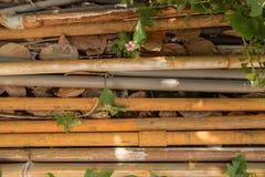 Uitstekende Oude pvc-Pijpen met Waterslang - Openluchttuin Groen Le stock foto