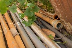 Uitstekende Oude pvc-Waterpijpen met Groene Bladereninstallatie - Openluchtg stock foto's