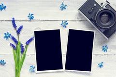 Uitstekende retro camera, lege fotokaders en de lente blauwe bloemen Royalty-vrije Stock Foto