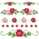 Uitstekende rozen Stock Afbeelding