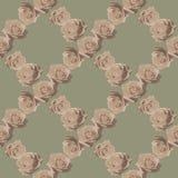 Uitstekende rozen op gevoelige achtergrond royalty-vrije stock afbeelding