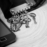 Uitstekende sleutels met tekens van gebruik Stock Foto