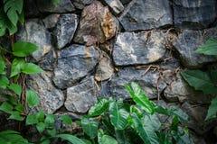 Uitstekende Steenmuren Stock Afbeelding