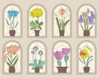 Uitstekende Stijlbloemen op Venstervensterbanken Stock Foto's
