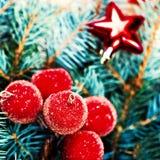 Uitstekende Takken en Kerstmisdecoratie i van de Kerstboompijnboom Royalty-vrije Stock Afbeelding