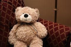 Uitstekende Teddybeer Stock Foto's