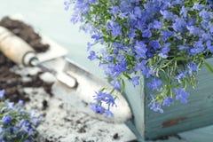 Uitstekende tuinhulpmiddelen Royalty-vrije Stock Foto's