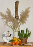 Uitstekende uren, een rietboeket, een cactus, een amulet, een fruit en a Royalty-vrije Stock Fotografie