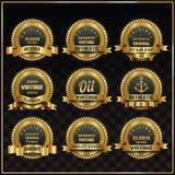 Uitstekende vector retro geplaatste etikettensymbolen Royalty-vrije Stock Afbeeldingen