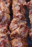 Uitstekende verse sappige stukken van het gebraden gerecht van de vleeskebab bij de houtskoolgrill Royalty-vrije Stock Foto's