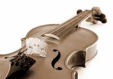 Uitstekende viool Stock Afbeelding
