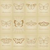 Uitstekende vlinder voor het scrapbooking Royalty-vrije Stock Foto