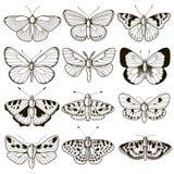 Uitstekende vlinder voor het scrapbooking Stock Foto